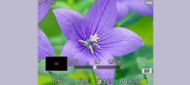ภาพของ RX100 V กล้องคอมแพคเซนเซอร์ 1.0-type พรีเมี่ยมพร้อมประสิทธิภาพของ AF ที่เหนือกว่า