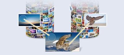 ภาพของ A8F | OLED | 4K Ultra HD | High Dynamic Range (HDR) | สมาร์ททีวี (Android TV)