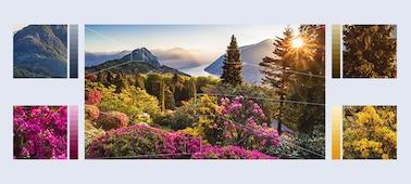 ภาพดอกไม้ภูเขาที่มีรายละเอียดสูงด้วย Object-based HDR Remaster