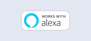 เชื่อมต่อกับ Alexa ของคุณ